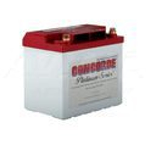 The RG-35AXC is a Concorde® Platinum Series® Aircraft Battery. The Platinum Series® is comprised of premium hand made AGM Aircraft Batteries with excess power for many applications. RG-35AXC has the highest cranking power and capacity in the 35 Group.