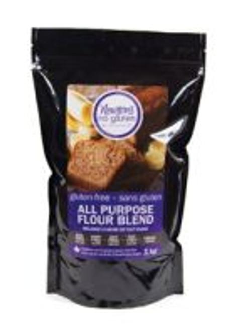 Newton's No Gluten All Purpose Flour Blend