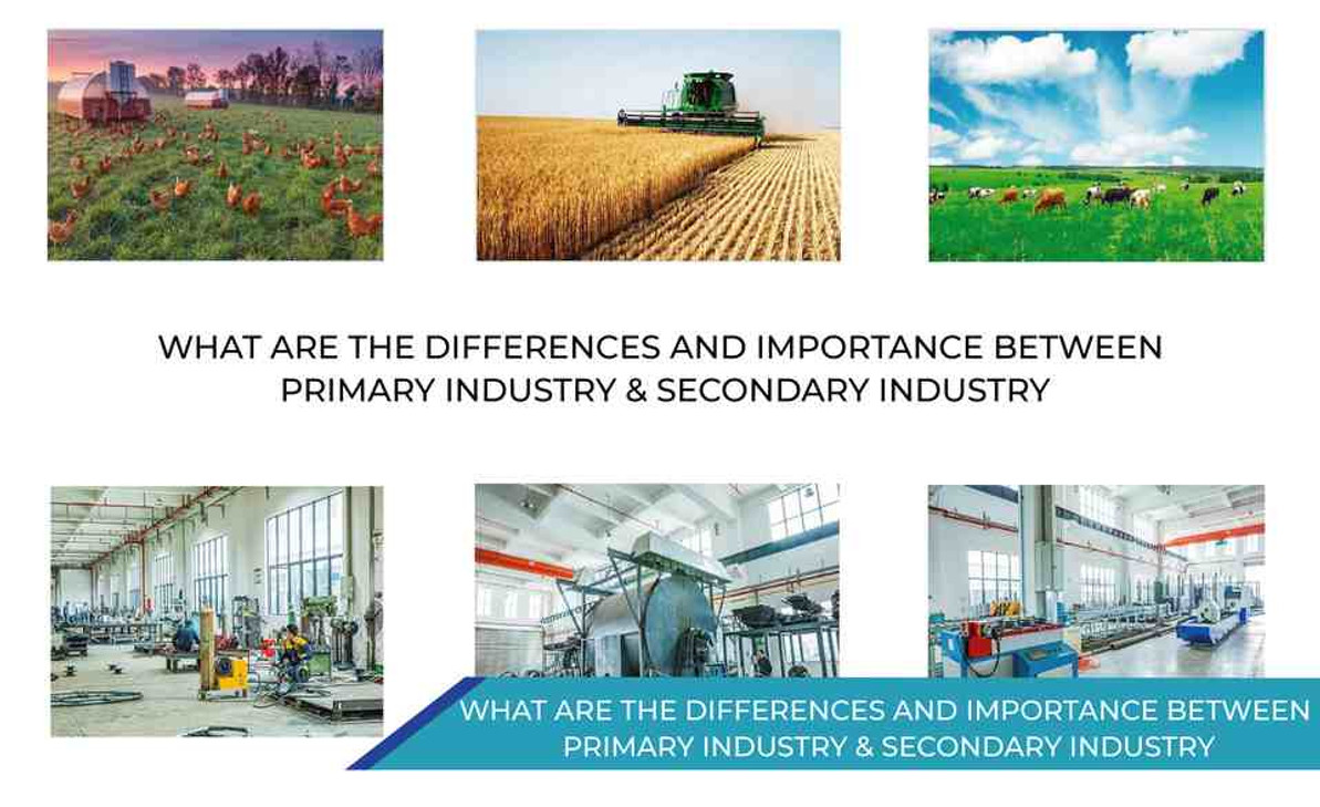 WHAT ARE THE DIFFERENCES AND IMPORTANCE B/W PRIMARY INDUSTRY & SECONDARY INDUSTRY?
