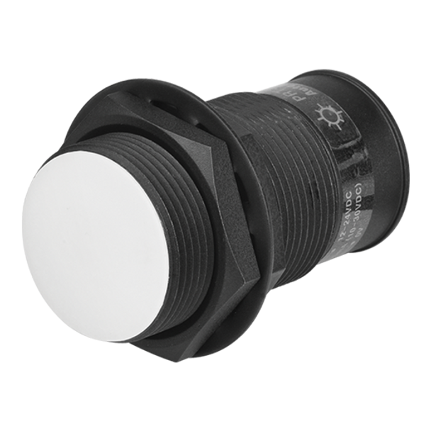 Autonics Proximity Sensors Inductive Sensors PRACM30-10DP (A1600001937)