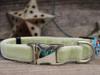 Dori dog collar - by Diva-Dog.com