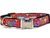 Bali Breeze Dog Collar
