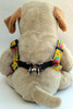 Spanish Rose step-in Harness - by Diva-Dog.com  - Back View