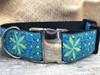 Pinwheel Caribbean Blue extra wide dog collar by www.diva-dog.com