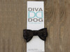 Celebrity Pooch Bow for dog collars shown in packaging by www.diva-dog.com