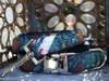 Nashville Rose dog collar and leash by www.diva-dog.com