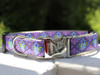Queen Bee dog collar shown in Blueberry Pie color by www.diva-dog.com