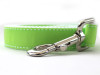Preppy in Lime Dog Leash - by Diva-Dog.com