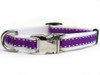 Preppy in Purple Dog Collar - by Diva-Dog.com