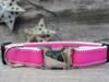 Preppy in Pink Dog Collar - by Diva-Dog.com