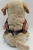 Bombay Step-In Harness - by Diva-Dog.com rear view
