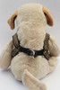 Caesar Step-In Harness - by Diva-Dog.com  rear view