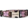 Argyle clearance dog collar