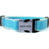 Preppy in blue clearance collar