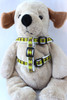 Harlequin Green Step-In Harness - by Diva-Dog.com  - Front View
