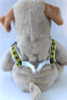 Harlequin Green Step-In Harness - by Diva-Dog.com  - Rear View