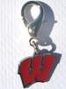 University of Wisconsin Badgers dog collar Charm - by Diva-Dog.com
