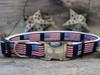 Stars n Stripes dog Collar - by Diva-Dog.com