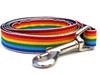 Rainbow dog Leash - by Diva-Dog.com