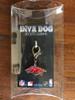 University of Arkansas Razorbacks dog collar Charm in packaging - by Diva-Dog.com