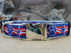Stars & Paws dog Collar - by Diva-Dog.com