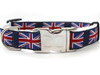 London Calling dog collar - by Diva-Dog.com