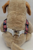 Stars n Stripes Step-In Harness - by Diva-Dog.com  - rear View
