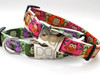 H'Owl Dog Collar - by Diva-Dog.com in Avocado and Grape or Pink and Pumpkin