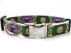 H'Owl Dog Collar - by Diva-Dog.com in Avocado & Grape