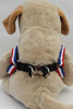 Patriotic Pooch Step-in Harness - by Diva-Dog.com  - rear View