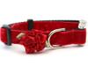 Mistletoe holly red collar by www.diva-dog.com