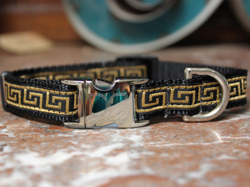 Caesar Dog Collar - by Diva-Dog.com