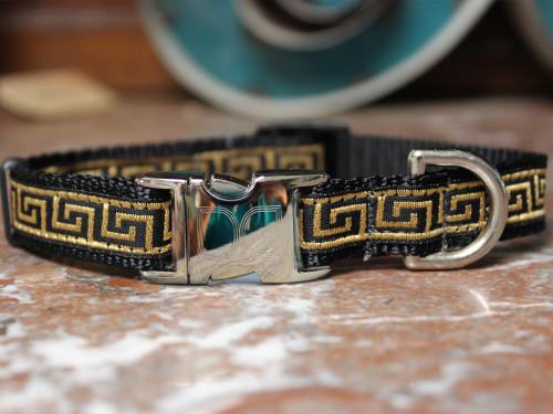 Caesar Dog Collar - by Diva-Dog.com