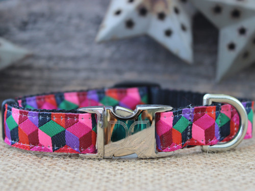 Block Party dog collar in dark - by Diva-Dog.com