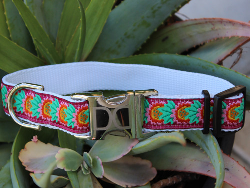 Nantucket Summer dog Collar - by Diva-Dog.com
