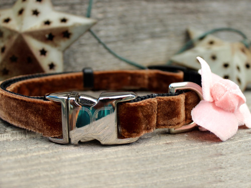 Camellia Pink Dog Collar - by Diva-Dog.com