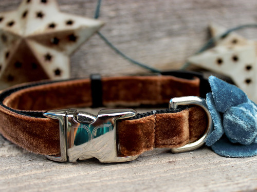 Camellia Blue Dog Collar - by Diva-Dog.com
