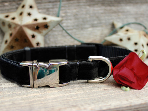 Carnation Red Dog Collar - by Diva-Dog.com
