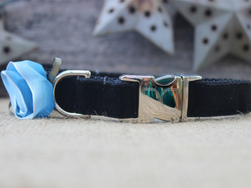 Carnation dog collar in blue - by Diva-Dog.com