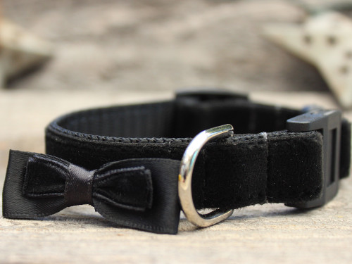Bowtie Black cat collar - by Diva-Dog.com