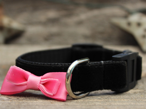 Bowtie Pink cat collar by Diva-Dog.com