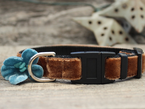 Camellia Blue cat collar by Diva-Dog.com