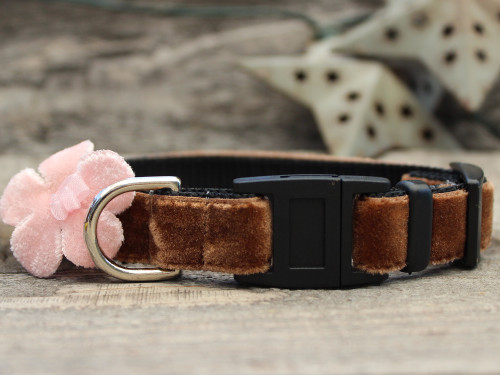 Camellia Pink cat collar by Diva-Dog.com