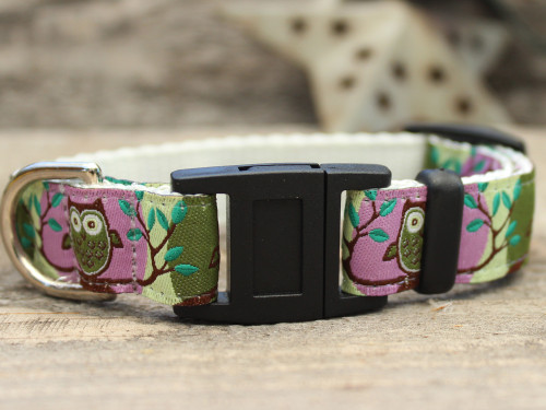 H'Owl Purple and Avocado cat collar by Diva-Dog.com