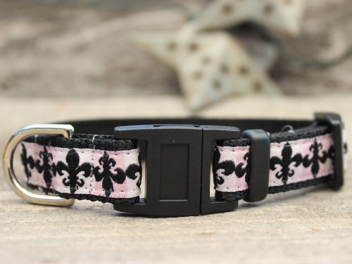 Katrina cat collar by Diva-Dog.com