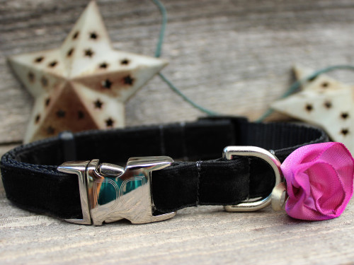 Carnation Orchid Dog Collar - by Diva-Dog.com