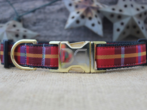 Vixen dog collar by Diva-Dog.com
