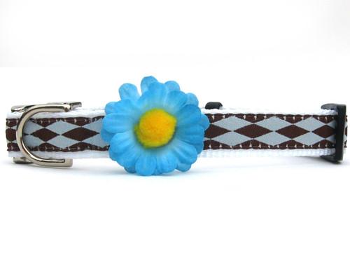Gerber Daisy Blue Dog Collar - by Diva-Dog.com