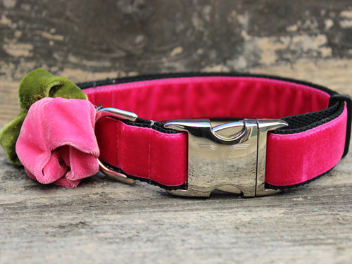 Rosie pink velvet dog collar by diva-dog.com