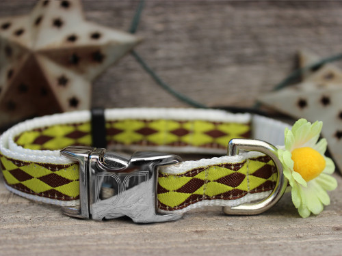 Gerber Daisy Green dog collar - by Diva-Dog.com